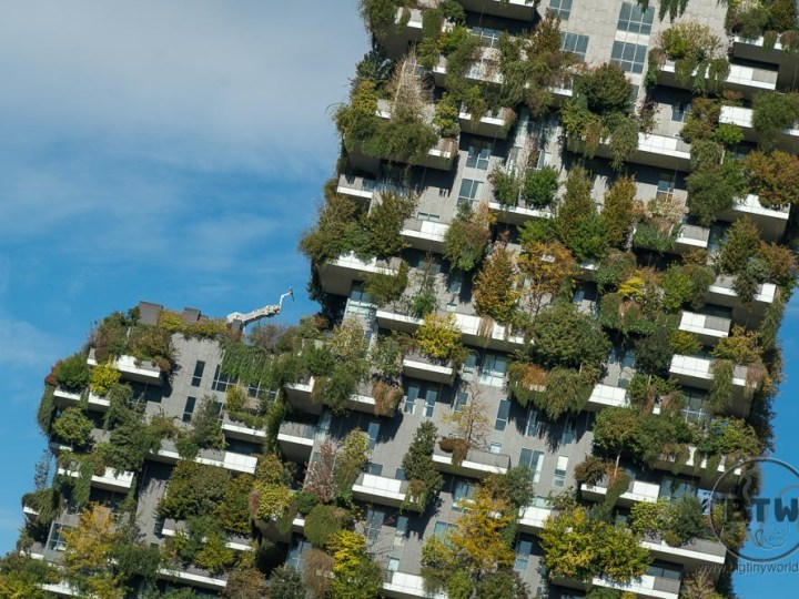 Plant-covered apartment tower in Milan, Italy
