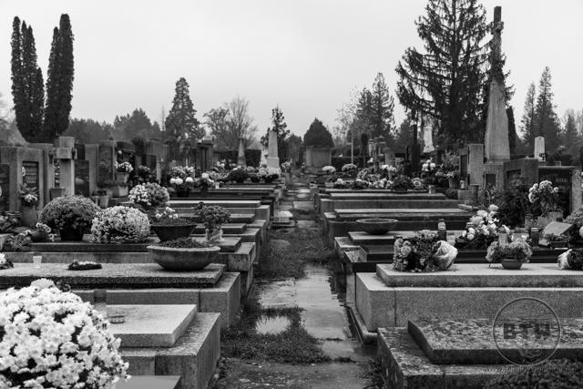 zagreb-graveyard-3