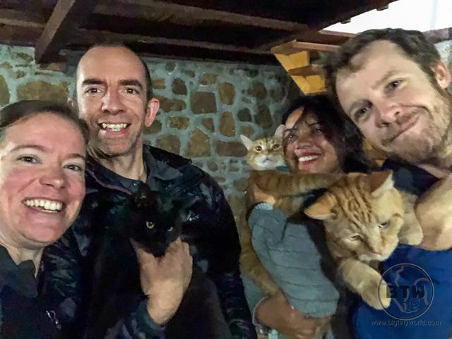 montenegro-cat-sit-10