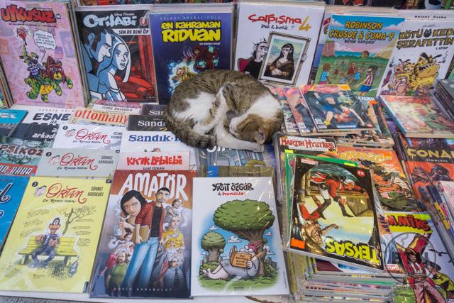 Kadikoy Istanbul Cat on Comic Books