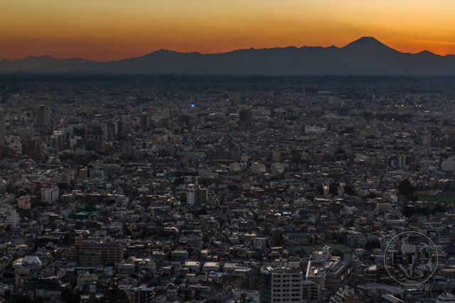 The sprawl of Tokyo at sunset, with Mt. Fuji in the distance