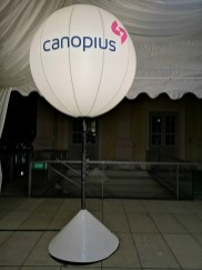 Lighted Balloons for Event Rental
