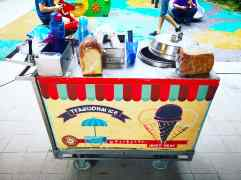 Traditional Ice Cream Cart Rental copy