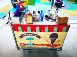 Traditional Ice Cream Cart Rental copy