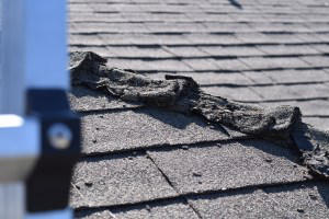 about roof inspection