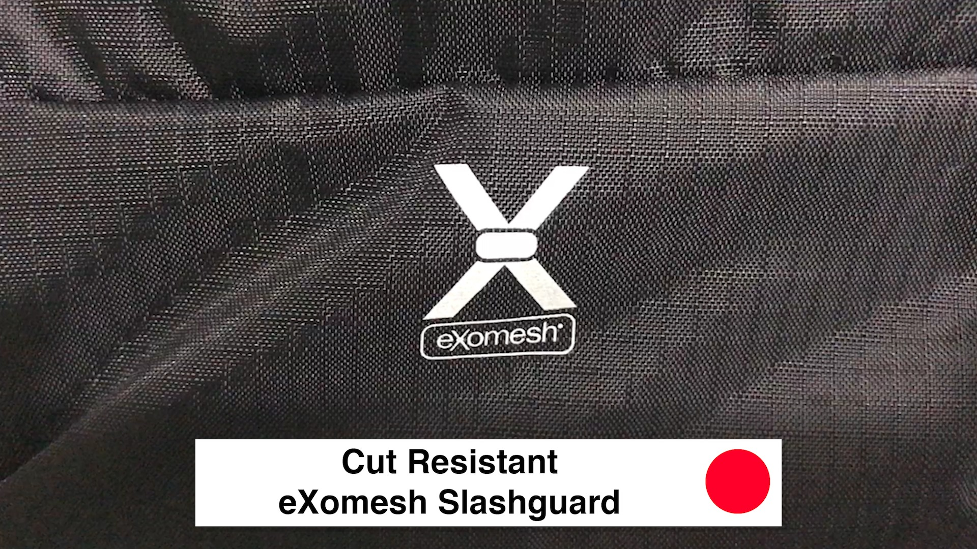 Cut Resistant eXomesh Slashguard - Pacsafe Venturesafe X30 Travel Pack - Black Anti Theft Backpack