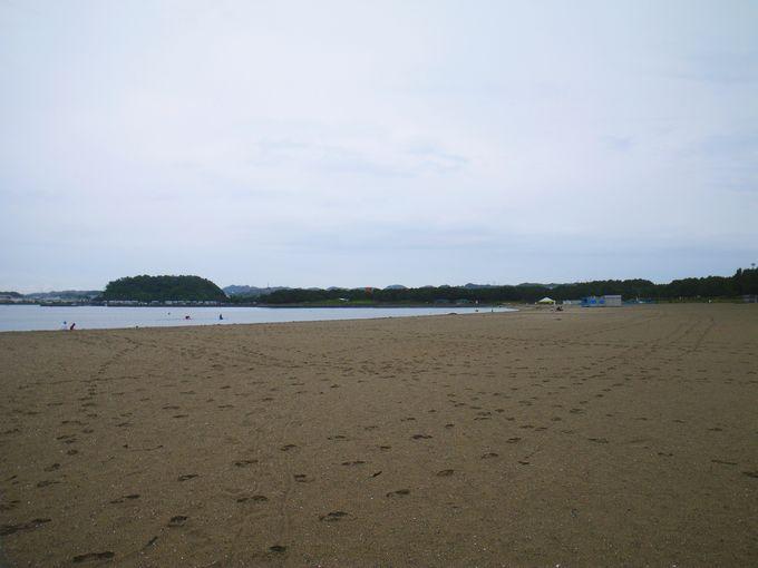 海の公園 砂浜は広い