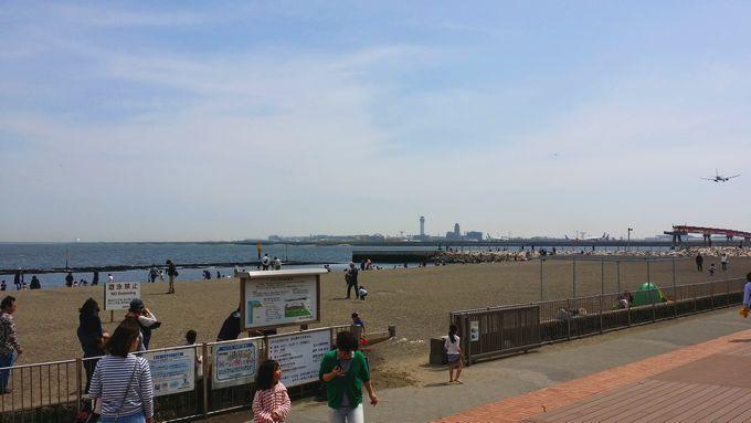 城南島海浜公園 つばさ浜 入口