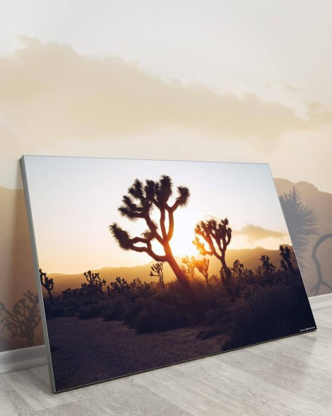 Huge-Wall-Art-Jared-Gunderson-Desert-Sunrise
