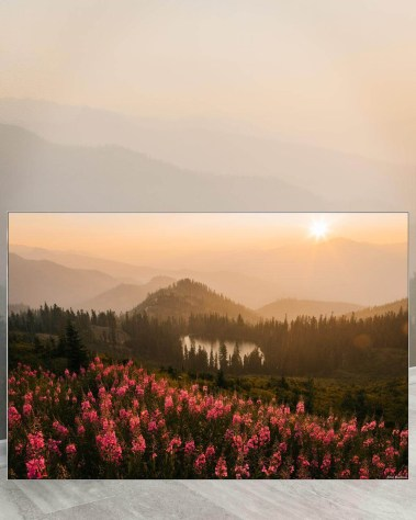 Big Biggest Massive Huge Large Largest Giant Gigantic Wall Décor Art Backlit Fabric Home Deco Artwork Artist Jared Gunderson Landscape Scenic Photography Instagram Field Flowers Wild Mountains Trees