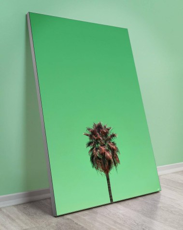 Oversized wall decor of a Centered Tempe Arizona palm tree with a bright green background