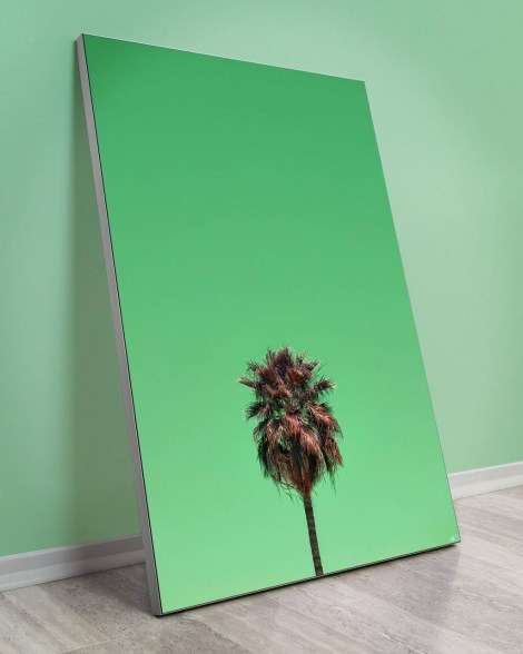 Tempe-Arizona-palms-wall-decor-Arytron