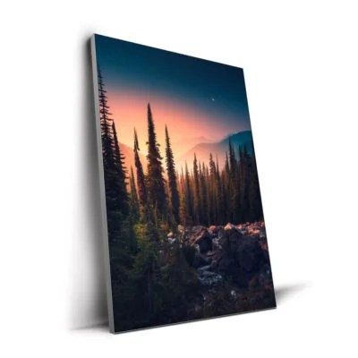 Large Nature Wall Art Guide