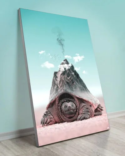 Big Turtle Tortoise Surreal Animal Nature Wall Art Decor