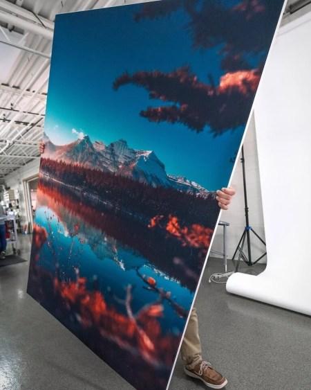Nature Wall Art Oversized