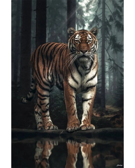 Large Surreal Tiger Big Cat Portrait Animal Wildlife Surreal Photography by Zenja Gammer
