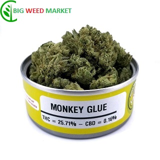 Buy Monkey Glue Weed Cans Online Fr