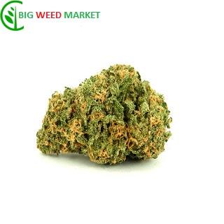 Buy Wet Dream Marijuana Online Europe