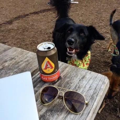 dog friendly bar austin
