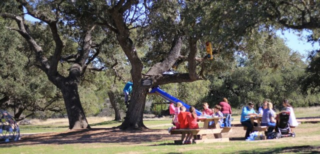 dripping springs things to do