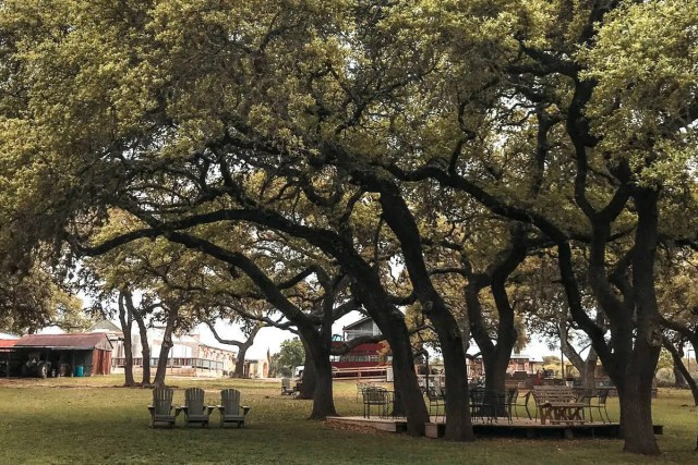 texas day trips