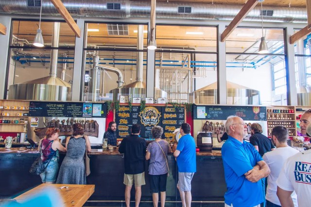 live oak brewing