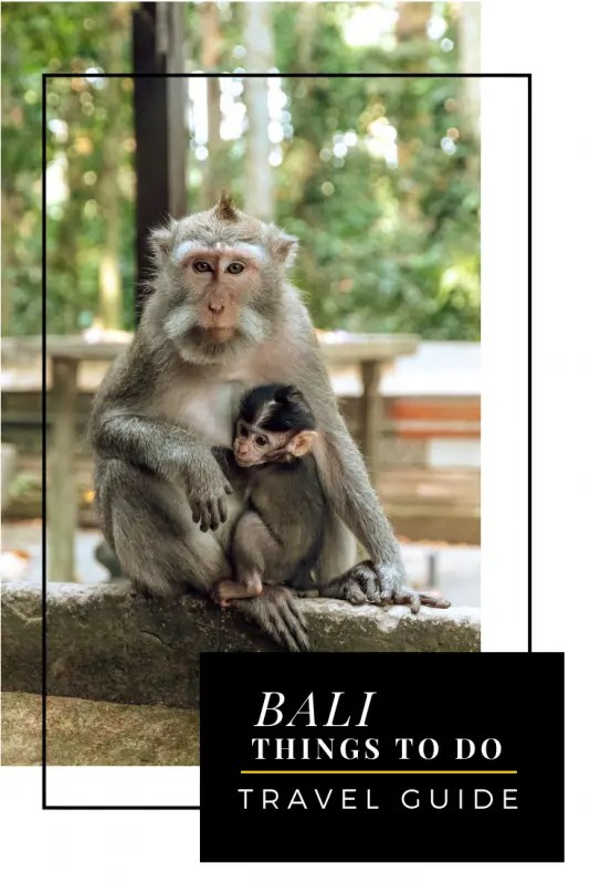 bali travel guide pinterest