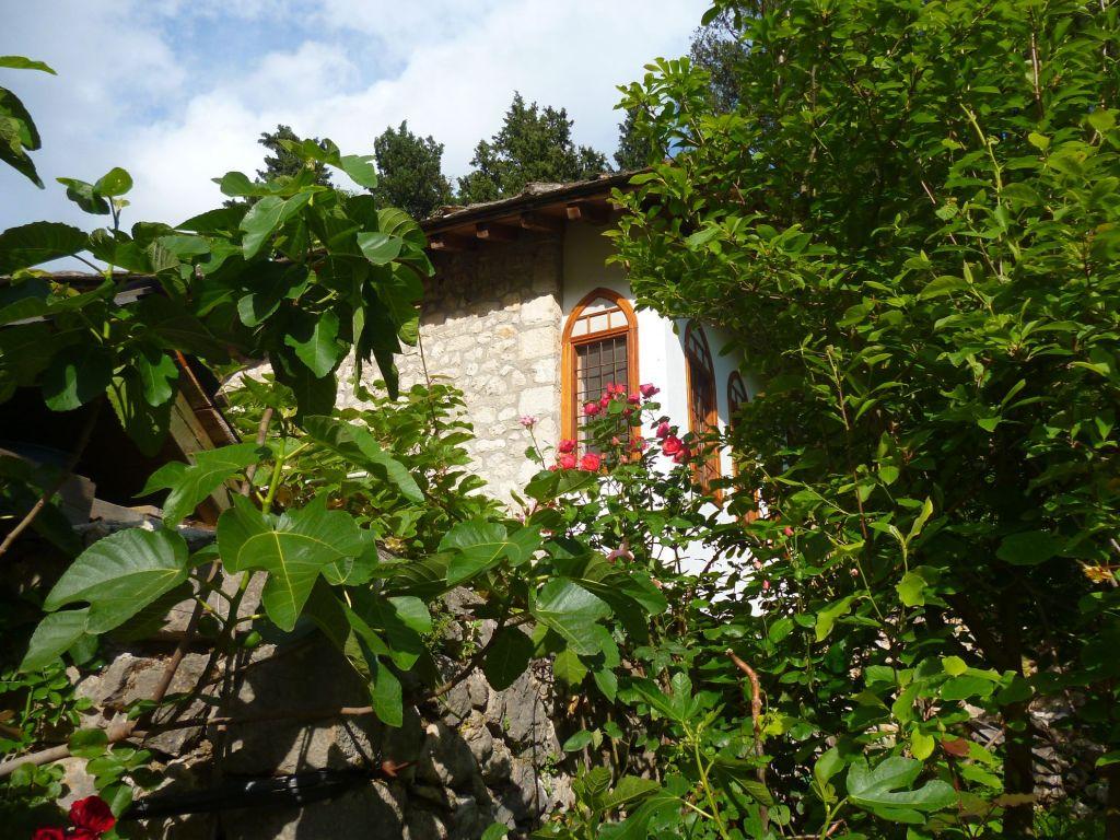 Дом в окружении сада. Фото: Елена Арсениевич, CC BY-SA 3.0