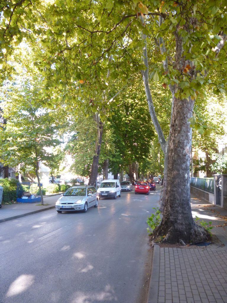 Тенистые улицы Мостара. Фото: Елена Арсениевич, CC BY-SA 3.0
