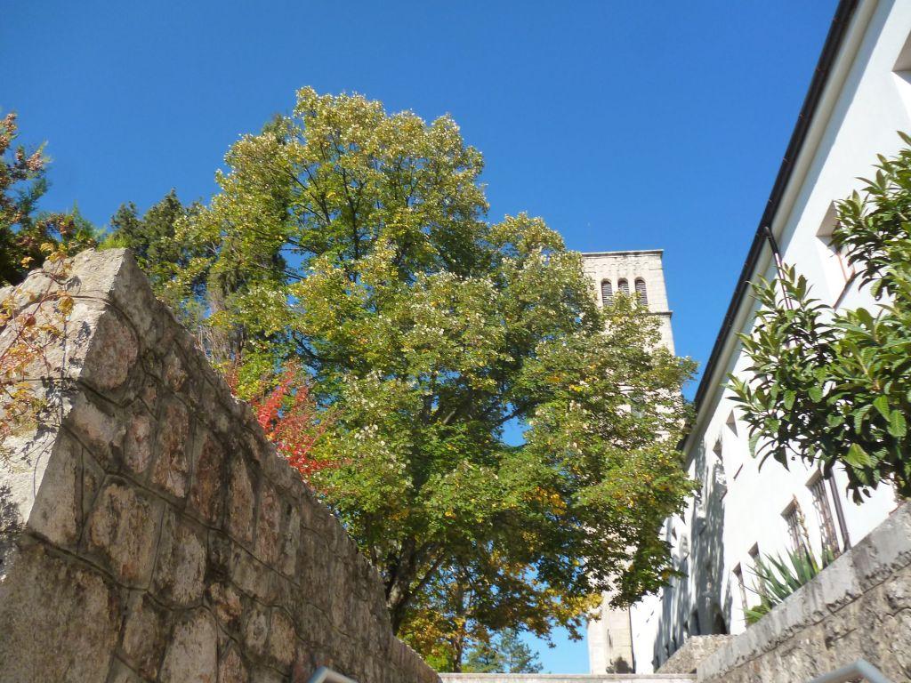 Монастырь в Широком Бриеге. Фото: Елена Арсениевич, CC BY-SA 3.0