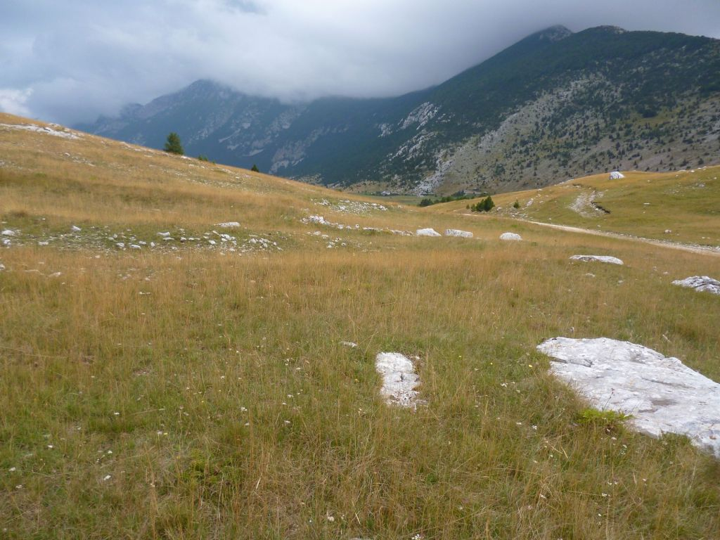 Суровый пейзаж. Фото: Елена Арсениевич, CC BY-SA 3.0