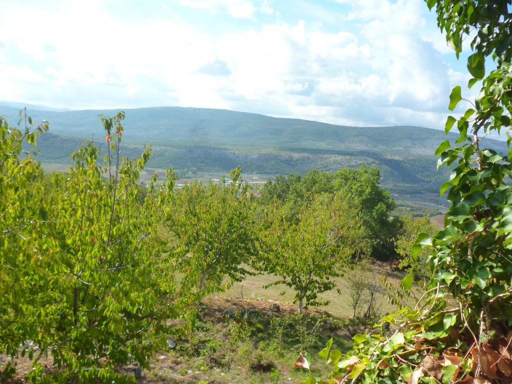 Видово поле под возвышенностью, на которой расположены Ошаничи. Фото: Елена Арсениевич, CC BY-SA 3.0