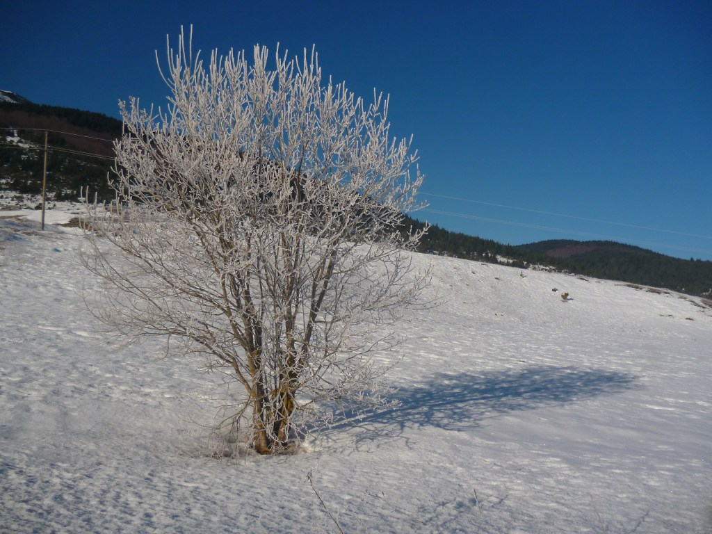 Купрес зимой. Фото: Елена Арсениевич, CC BY-SA 3.0