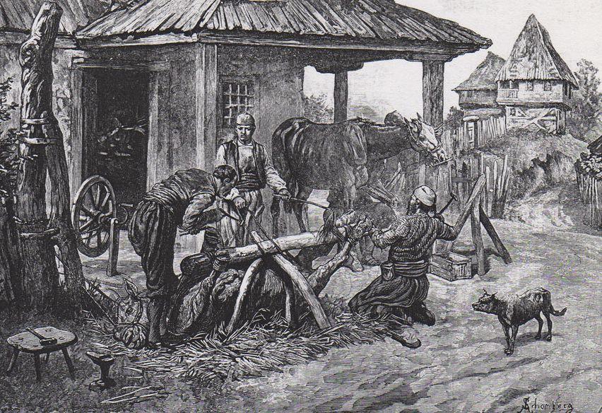 Подковывание лошади в старые времена. Автор неизвестен, public domain