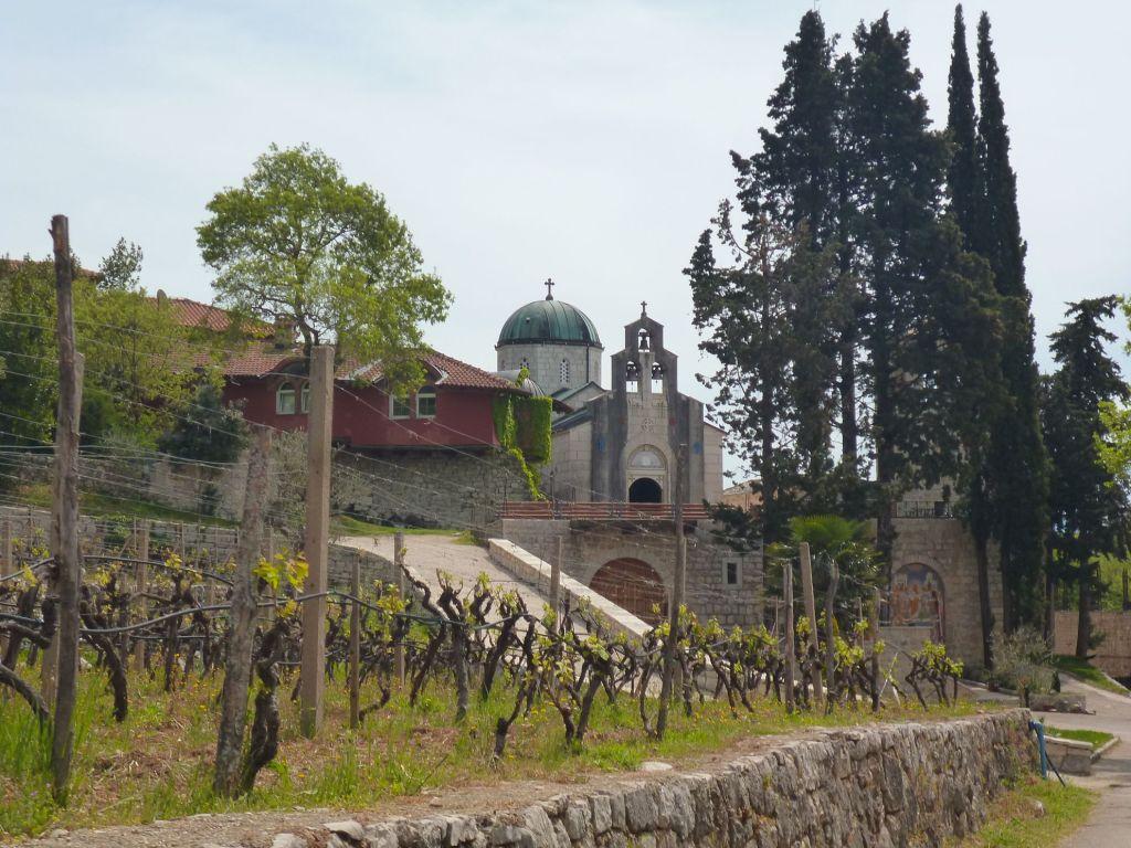 Монастырь Тврдош и его виноградники. Фото: Елена Арсениевич, CC BY-SA 3.0