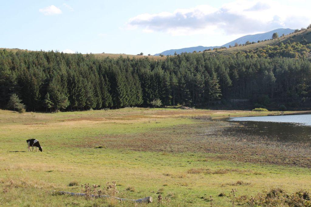 Озеро Храст. Фото: Елена Арсениевич, CC BY-SA 3.0