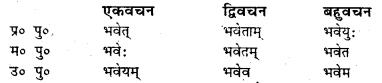 Bihar Board Class 7 Sanskrit व्याकरण धातु-रूपाणि 10