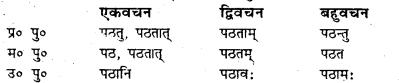 Bihar Board Class 7 Sanskrit व्याकरण धातु-रूपाणि 12