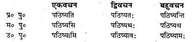 Bihar Board Class 7 Sanskrit व्याकरण धातु-रूपाणि 13