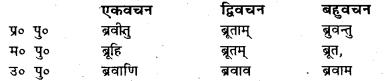 Bihar Board Class 7 Sanskrit व्याकरण धातु-रूपाणि 43