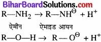 BIhar Board Class 12 Chemistry Chapter 13 ऐमीन img-44