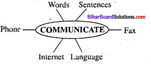 Bihar Board Class 6 English Book Solutions Chapter 4 Do Animals Share Ideas 2