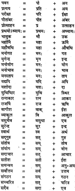 Bihar Board Class 11th Hindi व्याकरण संधि 3