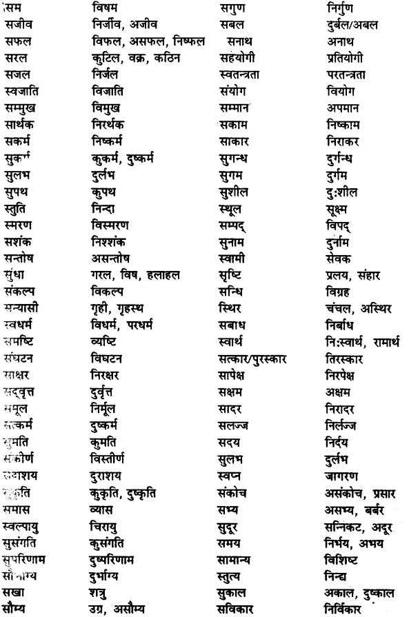 Bihar Board Class 12th Hindi व्याकरण विलोम या विपरीतार्थक शब्द 17