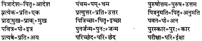 Bihar Board Class 12th Hindi व्याकरण संधि 18