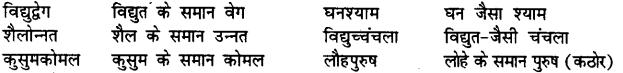 Bihar Board Class 12th Hindi व्याकरण समास 15