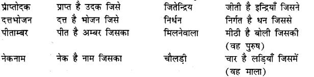 Bihar Board Class 12th Hindi व्याकरण समास 21