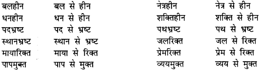 Bihar Board Class 12th Hindi व्याकरण समास 8