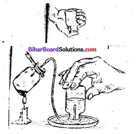 Bihar Board Class 7 Science Solutions Chapter 5 पदार्थ में रासायनिक परिवर्तन 1