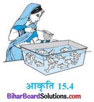Bihar Board Class 10 Maths Solutions Chapter 15 प्रायिकता Ex 15.1 Q11